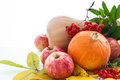 Autumnal pumpkins apples and ashberry with fall leaves stll life Stock Photography