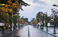Autumnal road in palanga liethuania morning view on the central promenade of Stock Photo