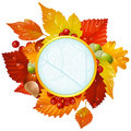 Autumnal round frame with fall leaf, chestnut, aco Stock Photos