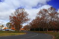 Autumnal scenery of lake burley griffin shore national public place is located near s in autum season Stock Photo