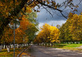 Autumnal scenery in park nature central kostroma city Stock Images
