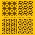 Autumnal seamless pattern. Leaves of trees, turkey, corn and pumpkin.