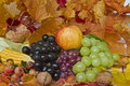 Autumnal still life autumn with various fruits and autumn leaves Royalty Free Stock Photography