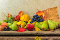 Autumnal still life with fruit and leaves on a wooden base apples pears nuts quince grapes Royalty Free Stock Photography