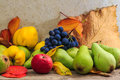 Autumnal still life with fruit and leaves on a wooden base apples pears quince grapes Royalty Free Stock Photography