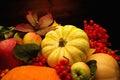 Autumnal still life thanksgiving day Stock Image