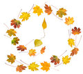 Autumnal time dance Royalty Free Stock Image