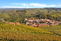 Autumnal view of vineyards and barolo in piedmont italy town among with yellow grape leaves on the hills langhe northern Royalty Free Stock Photo