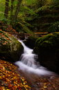 Autunm rushing water down from rocks with colorful fall leaves at foreground Stock Photos