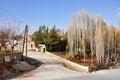 Autunm trees at maaloula syria Royalty Free Stock Photography