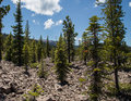 Avalanche area on mount lassen called chaos jumbles volcanic national park california Stock Image