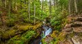 Avalanche creek gorge eroded glacier national park montana Stock Images