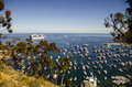 AVALON BAY AND CRUISE SHIP CATALINA ISLAND Stock Photography