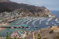 Avalon Harbor on Catalina Island Royalty Free Stock Photo