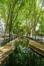 Avenida Da Liberdade Garden In Lisbon