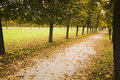 Avenue in bad autumn weather Stock Image