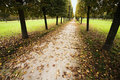 Avenue in bad autumn weather Stock Photography