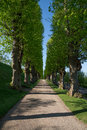 Avenue in the park of Frederiksborg Slot Palace, Hillerod, Denmark Royalty Free Stock Photo