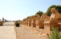 The Avenue of The Sphinxes. Royalty Free Stock Photos