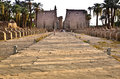 Avenue of sphinxes between karnak and luxor temples rows sphinx statues lining the route into temple formerly thebes in egypt Stock Image