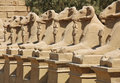 Avenue of sphinxes at Luxor, Egypt Royalty Free Stock Photos