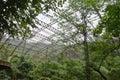 Aviary in thailand patatya Royalty Free Stock Photo