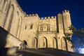 Avignon palais des papes by night vaucluse provence alpes cote d azur france palace of the popes Royalty Free Stock Image