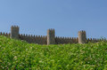 Avila wall sunny day Royalty Free Stock Photo
