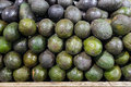 Avocado in food market avocados on a stall Royalty Free Stock Photo