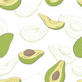 Avocado fruit graphic color seamless pattern sketch illustration