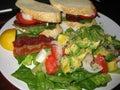 Avocado salad and blt Royalty Free Stock Photo