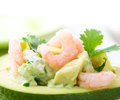 Avocado and Shrimps Salad Stock Photos