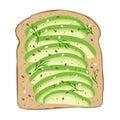 Avocado on toast bread. Delicious avocado sandwich. Vector illustration.