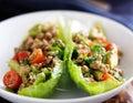Avocado turkey lettuce wraps Royalty Free Stock Photo