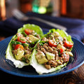 Avocado turkey lettuce wraps on plate Royalty Free Stock Photo