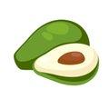 Avocado Whole and Half Isolated. Alligator Pear