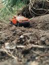 Avventura del giocattolo fuori dall automobile della strada viaggio in natura Fotografia Stock Libera da Diritti