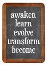 Awaken learn evolve on blackboard transform and become inspirational words a vintage slate personal growth concept Royalty Free Stock Images