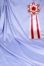 Award ribbon rosette on the art background Stock Photography
