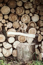 Axe on the wood log close other logs Royalty Free Stock Photography