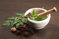 Ayurvedic herbs with mortar and pestle Royalty Free Stock Photography