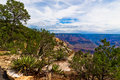 AZ-Grand Canyon-S Rim-West Rim Trail Royalty Free Stock Image