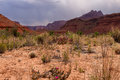 Az ut paria canyon vermillion cliffs wilderness paria river canyon this is the last portion of the mile backpack along the heading Stock Image