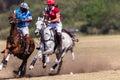 Azione di polo riders girl horse play Fotografia Stock