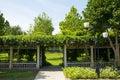 Azja chiny park korytarz i zielony winograd pekin jianhe krajobraz zaświecamy Zdjęcie Royalty Free
