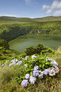 Azores landscape with lake in flores island caldeira funda por portugal vertical Royalty Free Stock Photography