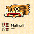 Aztec symbol malinalli calendar symbols or grass Royalty Free Stock Photo