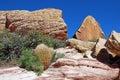 Azteekse de rotsvorming van de zandsteen en woestijnvegetatie dichtbij de Rode Canion van de Rots, Zuidelijk Nevada Royalty-vrije Stock Afbeelding