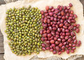 Azuki beans and mung beans Royalty Free Stock Photo