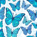 Azure butterflies seamless background Royalty Free Stock Photo
